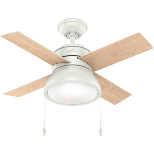 Hunter Loki 36 In. Fresh White Ceiling Fan with Light Kit